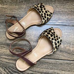 Seychelles Leopard Print Peep Toe Flat Sandals